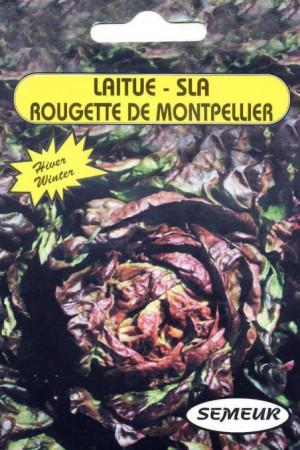 Semences potagères : Laitue pommée de pleine terre Rougette de Montpellier