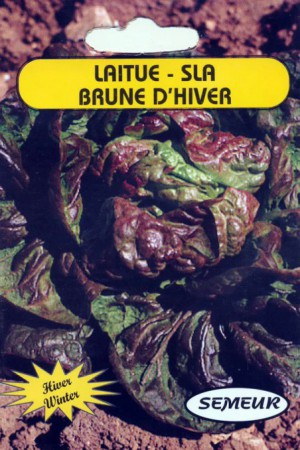 Semences potagères : Laitue pommée de pleine terre Brune d'hiver