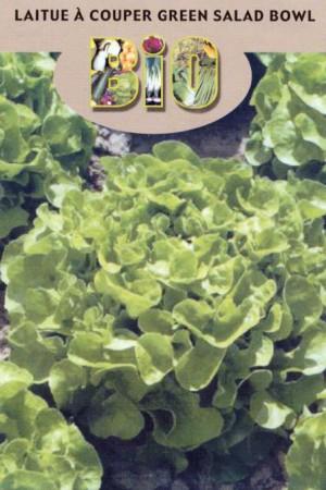 Semences potagères : Laitue à couper Green Salad Bowl BIO