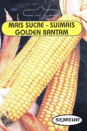Semences potagères : Mais Golden Bantam