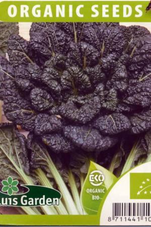 Semences potagères : Légumes asiatiques Tah tsaï