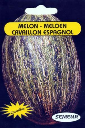 Semences potagères : Melon Cavaillon Espagnol
