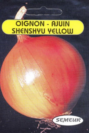 Semences potagères : Oignon Shenshyu yellow