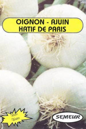 Semences potagères : Oignon Hâtif de Paris