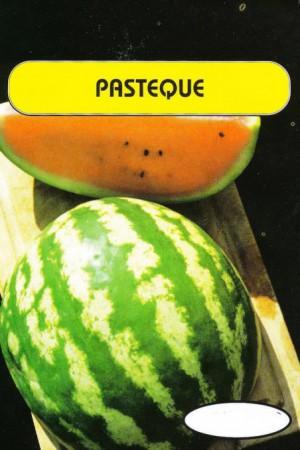Semences potagères : Pastèque Sugar Baby