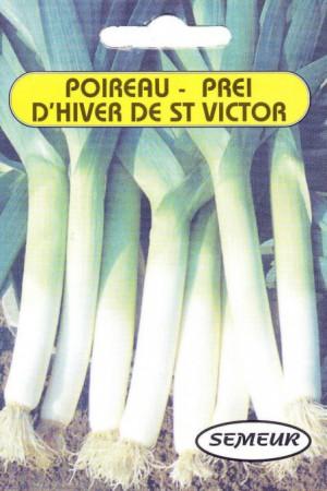 Semences potagères : Poireau Saint Victor