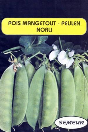 Semences potagères : Pois mangetout Norli